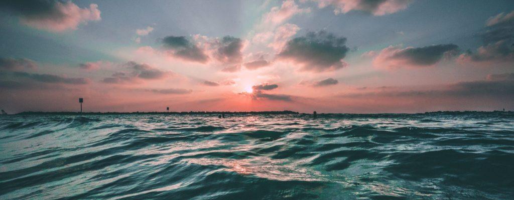 Ocean bleu_Le Poissonnier_Unsplash