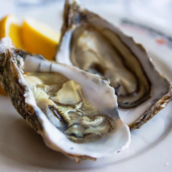 oyster_zoomFlou